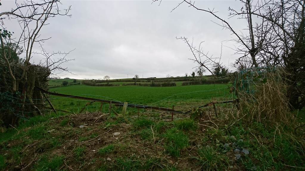 Land for sale between Katesbridge Road and Fort Road